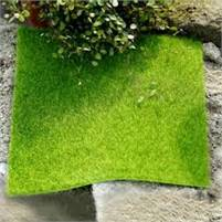 California Landscaping and Lawncare