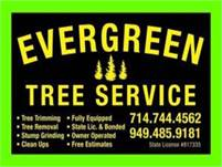 Tree Trimming Tree Removal Service