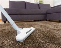 Sunshine Eco Cleaning Services Carpet Cleaning  Brisbane