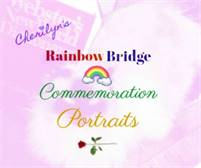 Cherilyn's Rainbow Bridge Commemoration Portraits Shelli Misoyianis